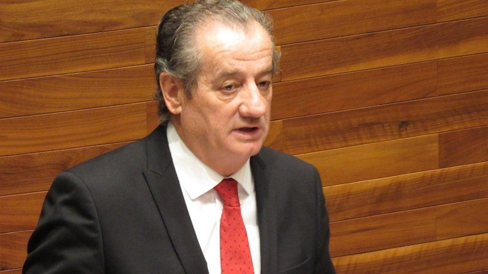 El portavoz de Ciudadanos en la Junta General, Nicanor García.El portavoz de Ciudadanos en la Junta General, Nicanor García