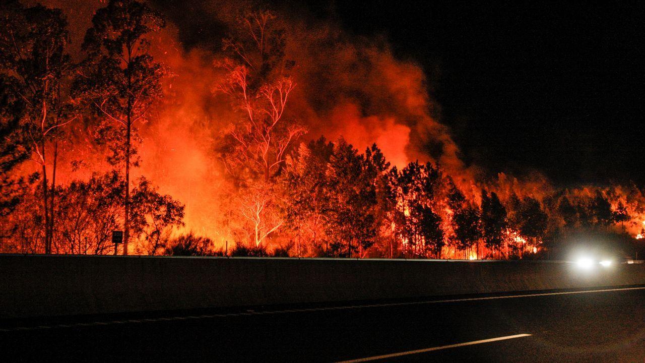 Incendio en Louriño.Incendio forestal en Parres