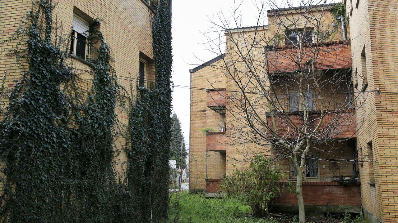 La falta de cuidado hace que la vegetación ya entre por las ventanas, que están rotas o mal aisladas.