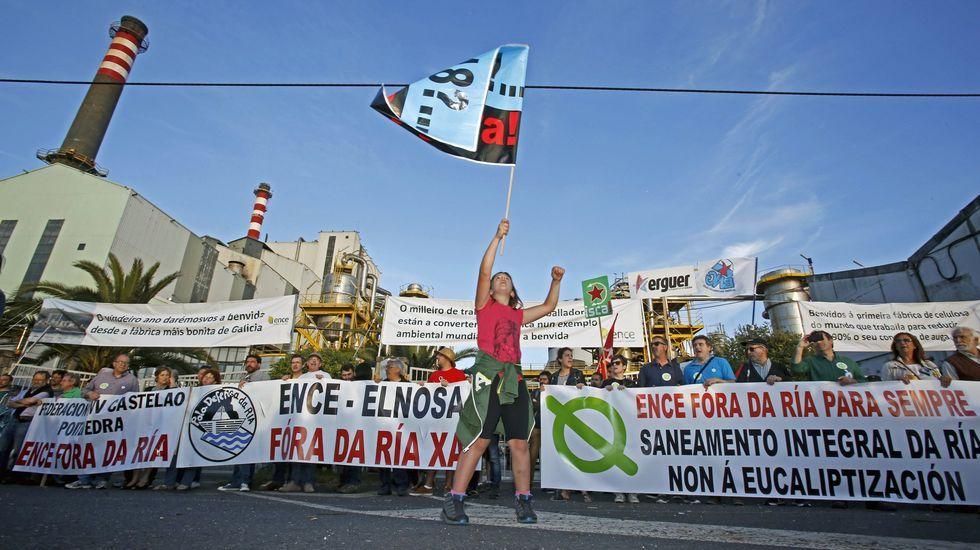 La marcha contra Ence terminará delante de la fábrica en Lourizán