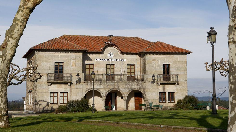 Viñedos de O Ribeiro en Regodeigón, con terrazas de varios propietarios.