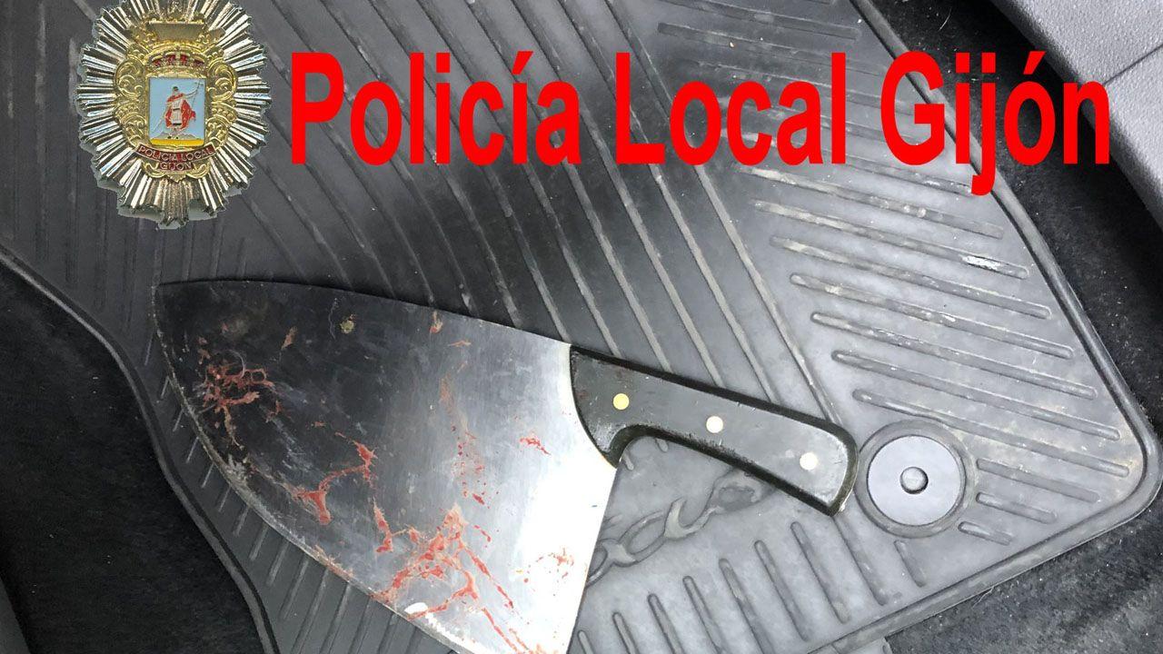 Miembros de la UME desinfectan Asturias.Machete utilizado en una reyerta en Gijón y localizado por la Policía Local