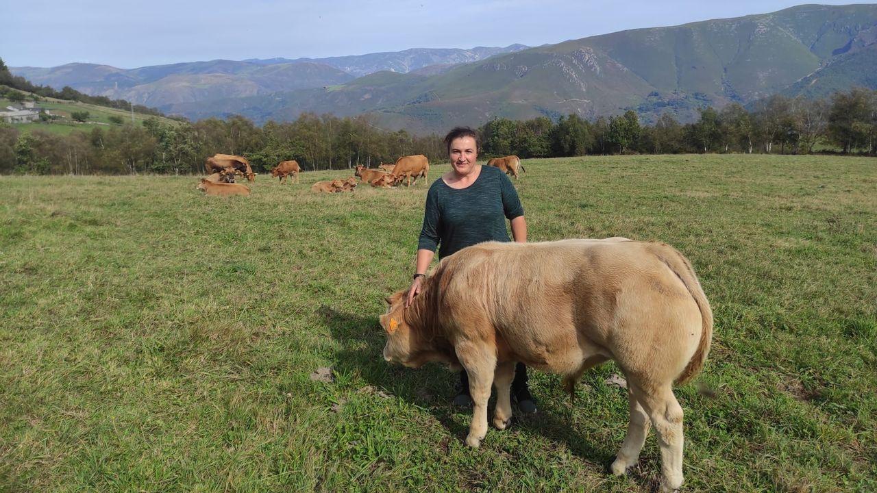 Raquel Díaz Barcia, con vacas da explotación familiar