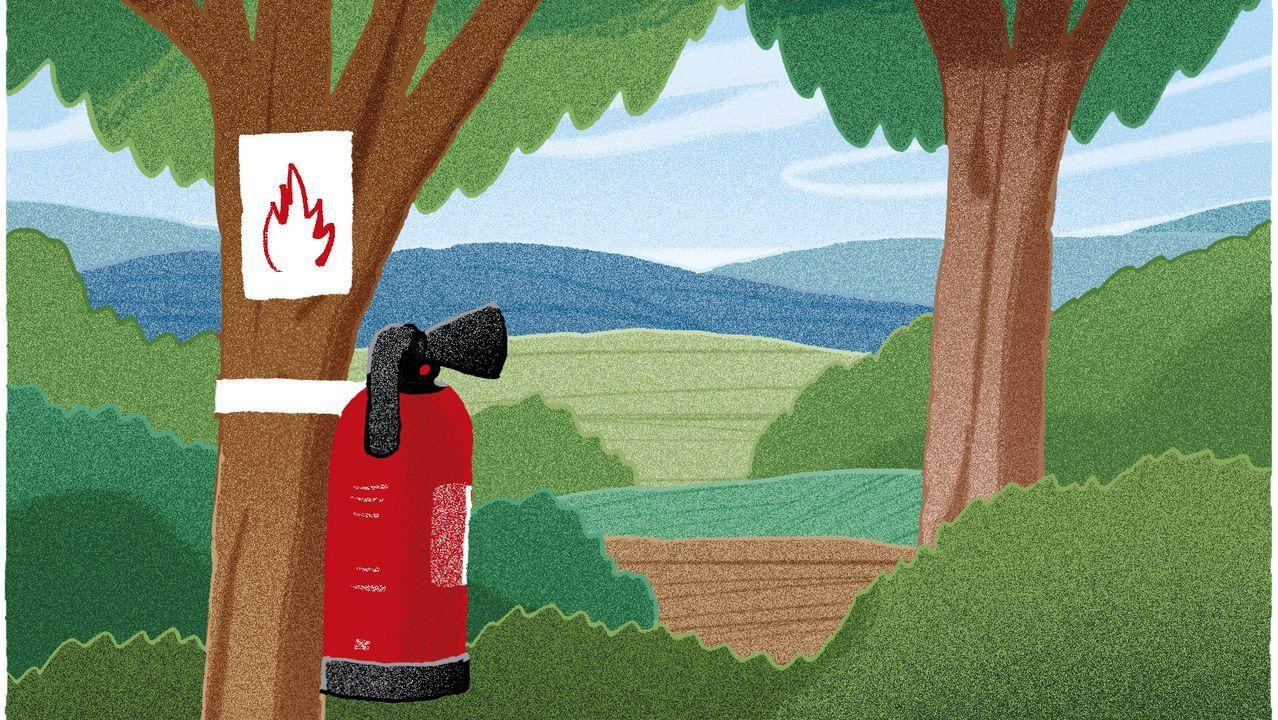 DUROS ANTECEDENTES. Ocurrido fuera de la temporada de verano, el fuego que afectó a los municipios de Rianxo y Dodro en marzo devoró 1.162 hectáreas. De hecho, las parroquias de Leiro e Isorna se han incorporado directamente al listado de zonas priorizadas.