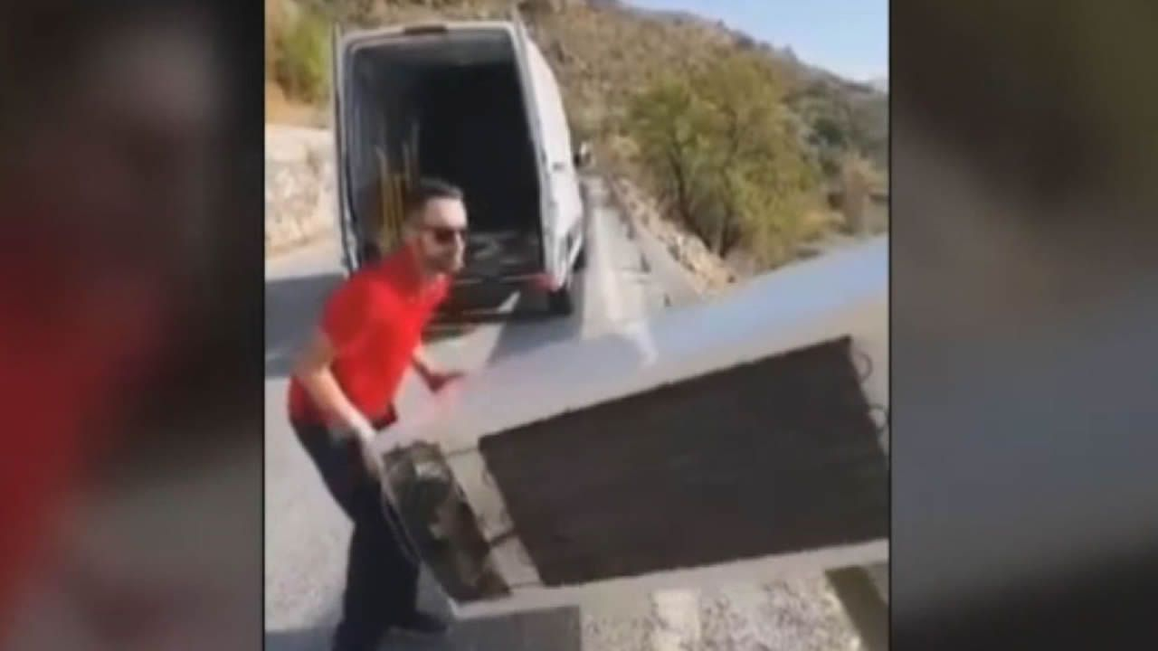 Un contenedor de basura a motor (averiado) en La Corredoria.El perro abandonado en Mieres con las orejas mutiladas