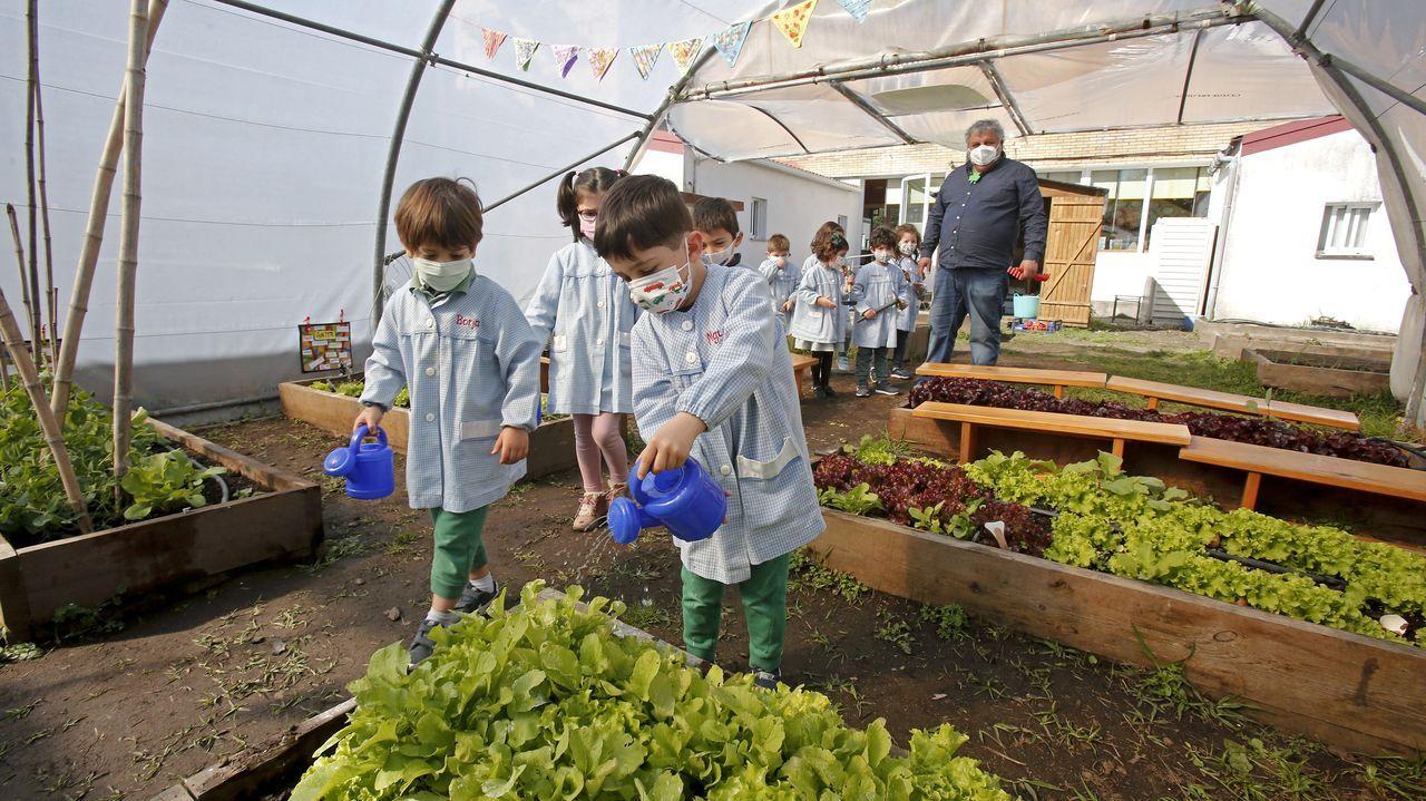 <span lang= gl >A nosa horta</span>, el huerto que miman escolares de la EEI Crespo Rivas.En el hospital Montecelo, en Pontevedra, hay 12 pacientes covid en planta y 5 graves en la uci
