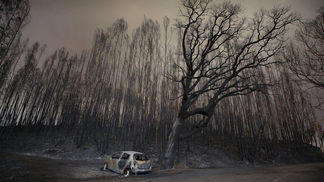 El incendio de Pedrógão ocasionó la muerte de 64 personas en junio del año pasado