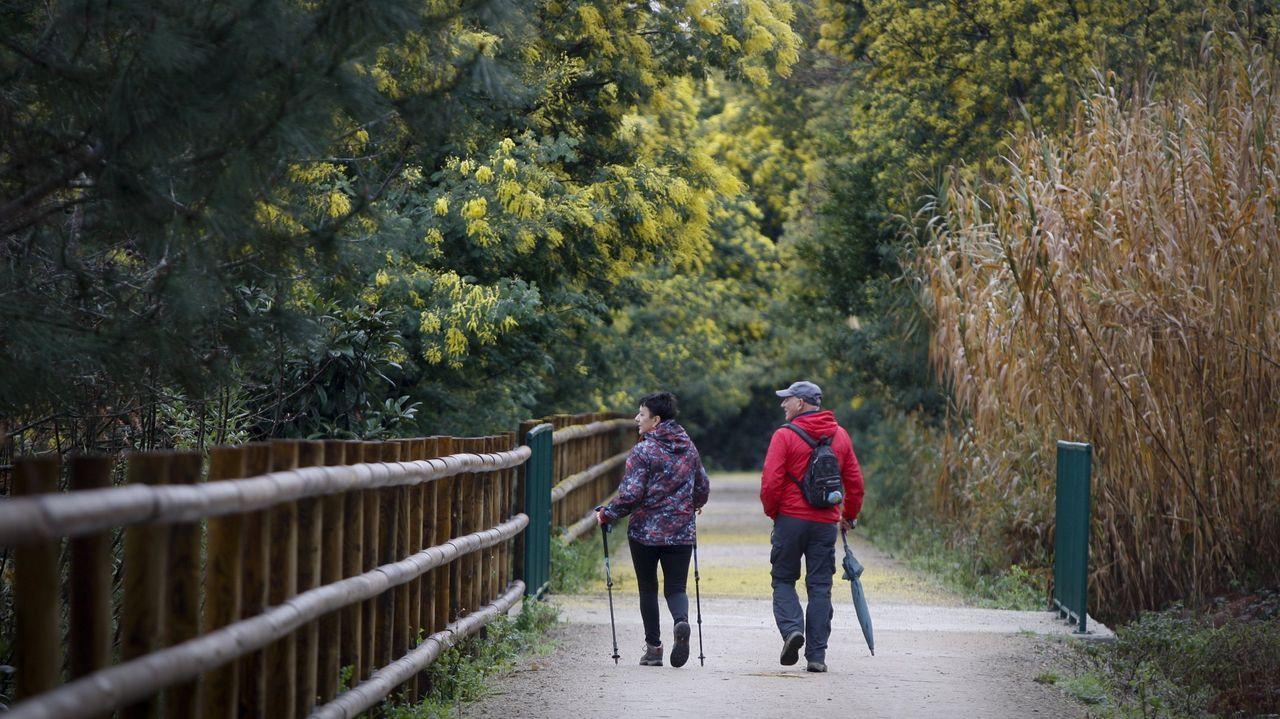 Dos jóvenes cruzan un paso de peatones con la mirada puesta en el móvil