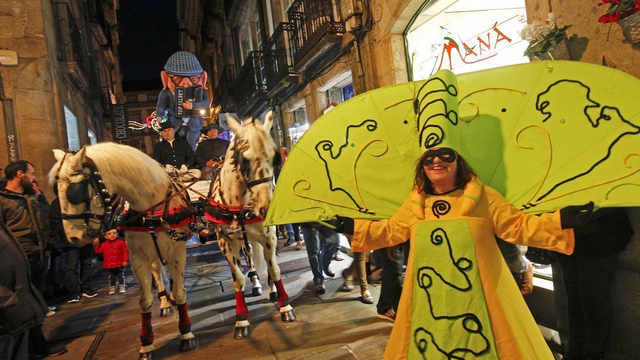 Las imágenes del entroido en Santiago y Negreira.Carmen Rosa Galán es la presidenta de la asociación Avisav