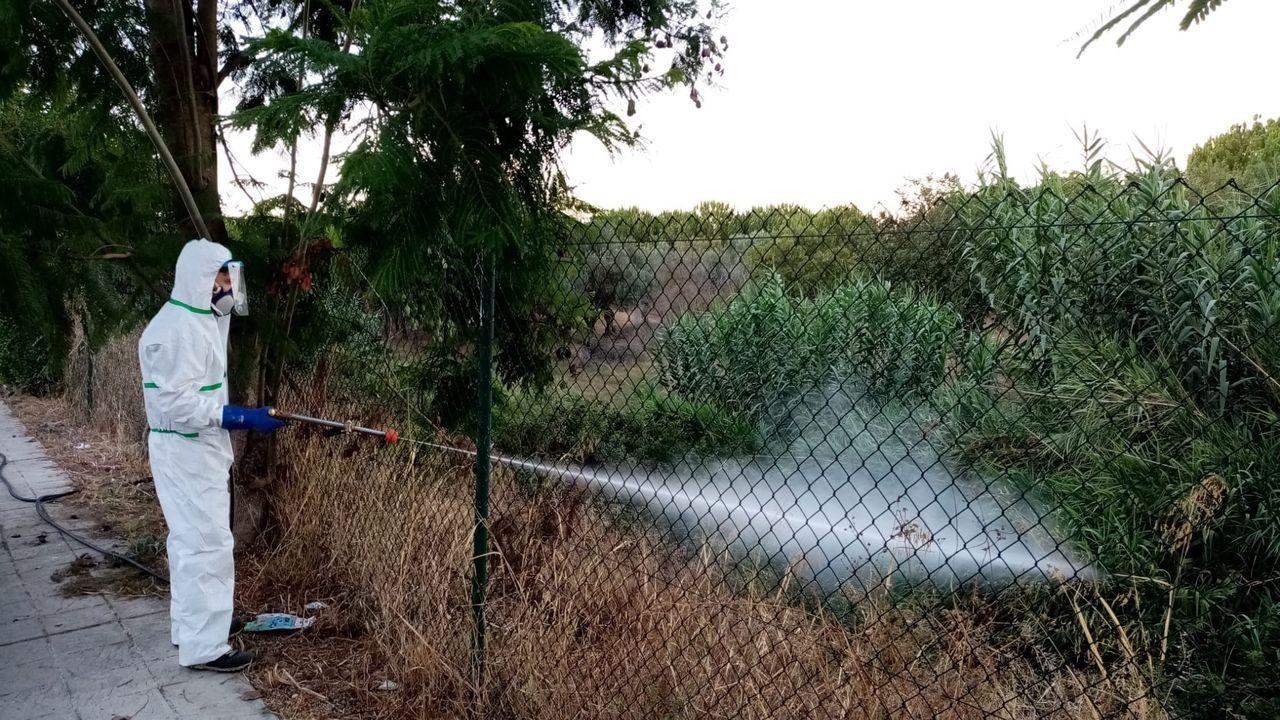 Un operario fumigando un terreno en Palomares del Río, parte del protocolo de actuación contra el mosquito del virus del Nilo