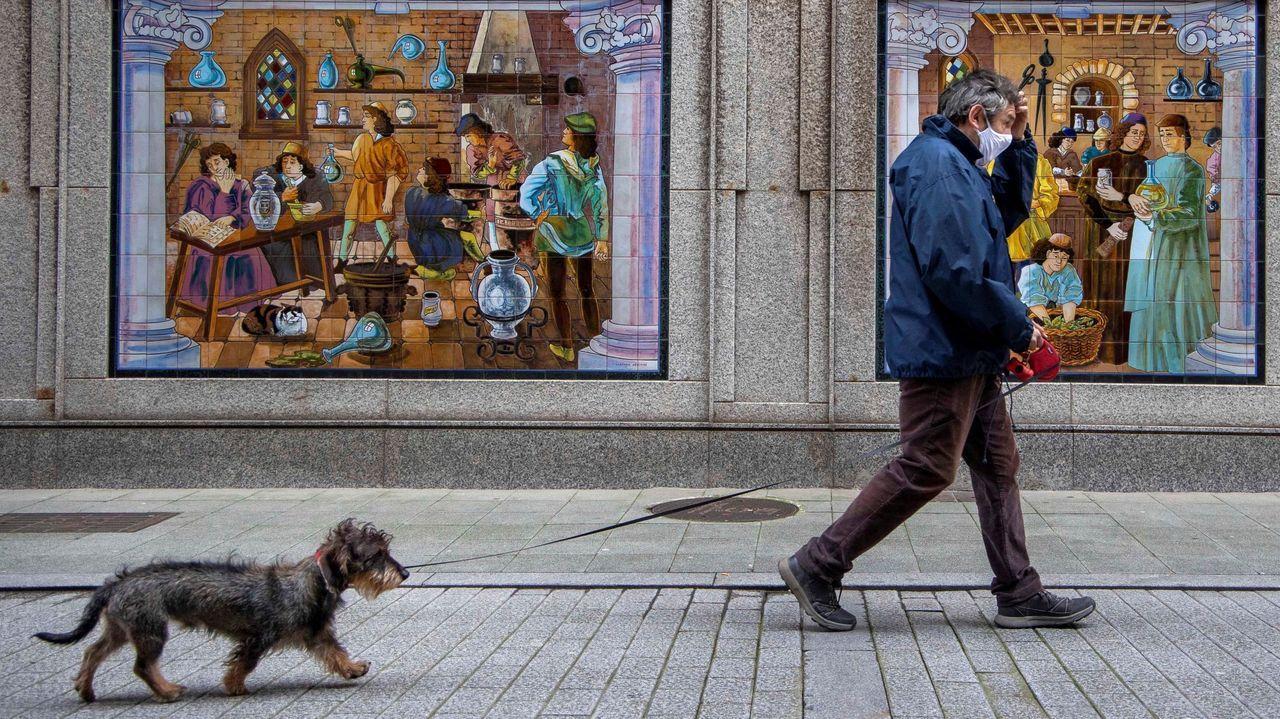 Un hombre pasea con su perro por el centro de Gijón