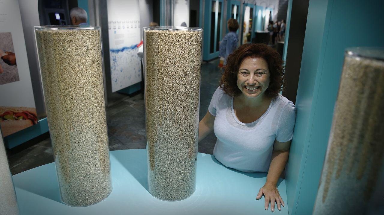 domus.La investigadora Ángela Nieto trabaja en el Instituto de Neurociencias (CSIC-UMH) de Alicante. Aquí dirige un grupo especializado en la plasticidad y los movimientos celulares durante el desarrollo embrionario y el cáncer