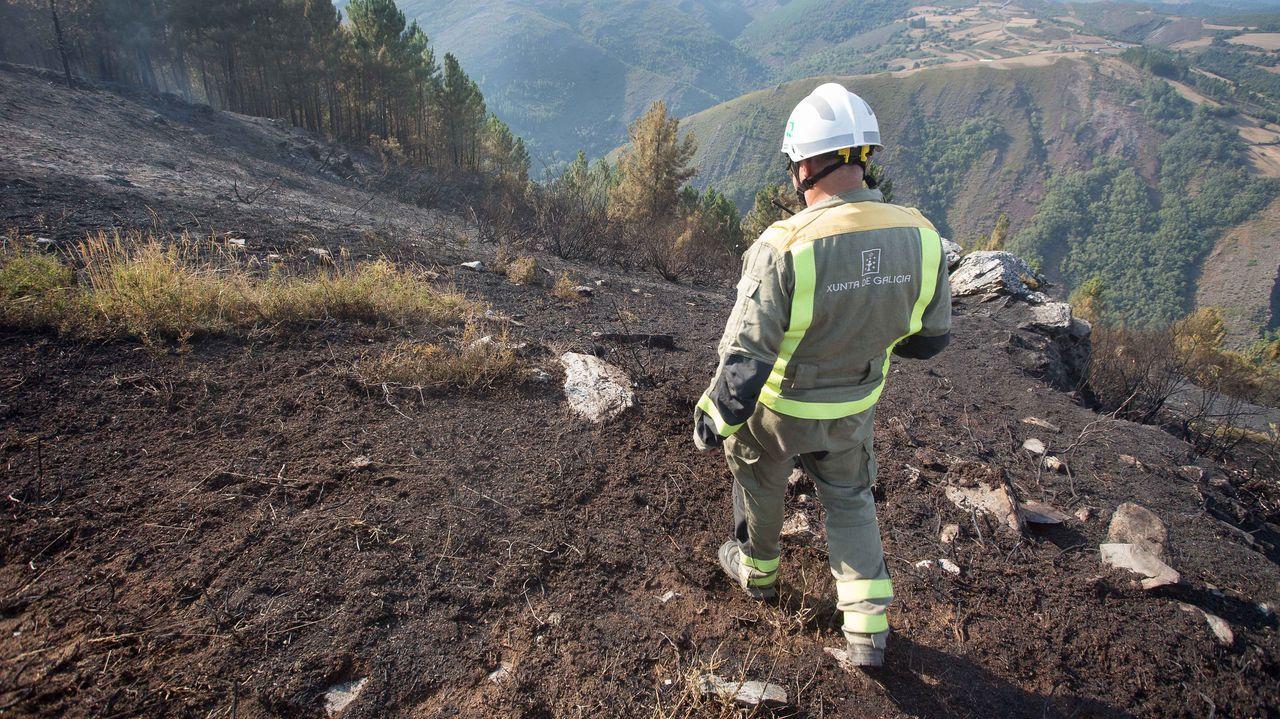 Os Grobos, un bosque propio deTolkien.Controlado un incendio en Son, en Navia de Suarna