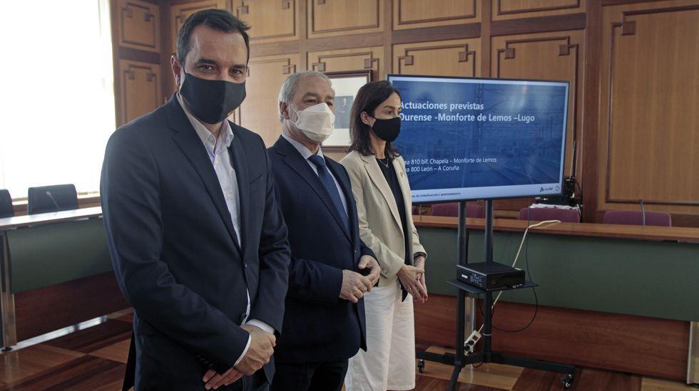 Un ejemplar de lobo.Sergio Vázquez Torrón, José Tomé e Isabel Pardo de Vera, este viernes en el Ayuntamiento de Monforte