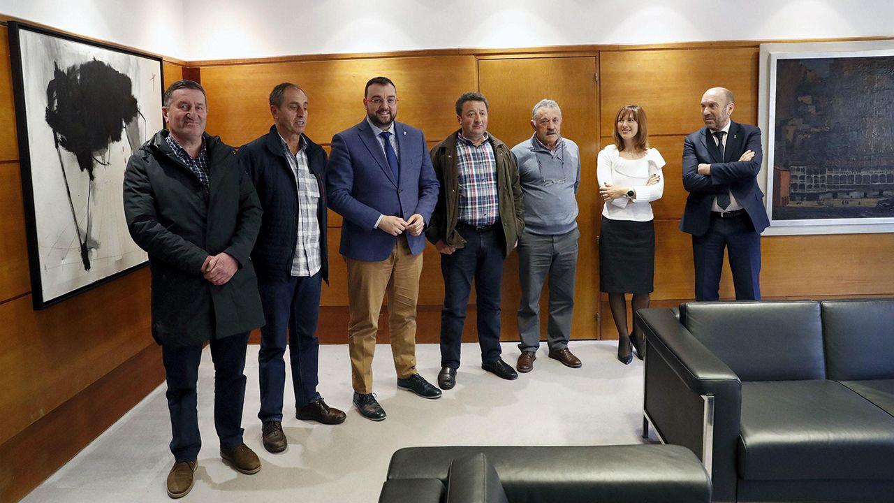 Banderas de los concejos asturianos.Los alcaldes del valle de Navia (Boal, Pesoz, Illano y Grandas de Salime) se han reunido con Adrián Barbón, presidente del Principado