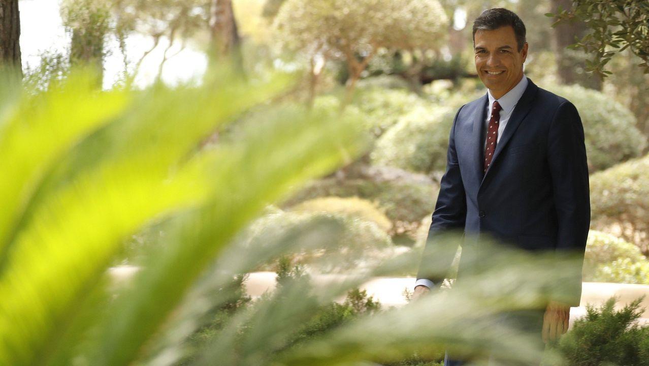 Pedro Sánchez, el pasado día 7, en los jardines del palacio de Marivent