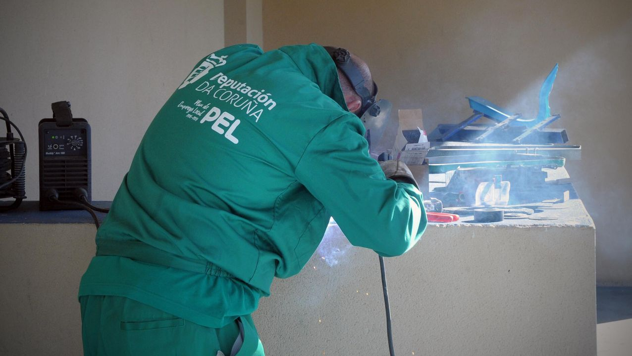 El proyecto María Manuela salvó los carballos que se entremezclan con las cabañas