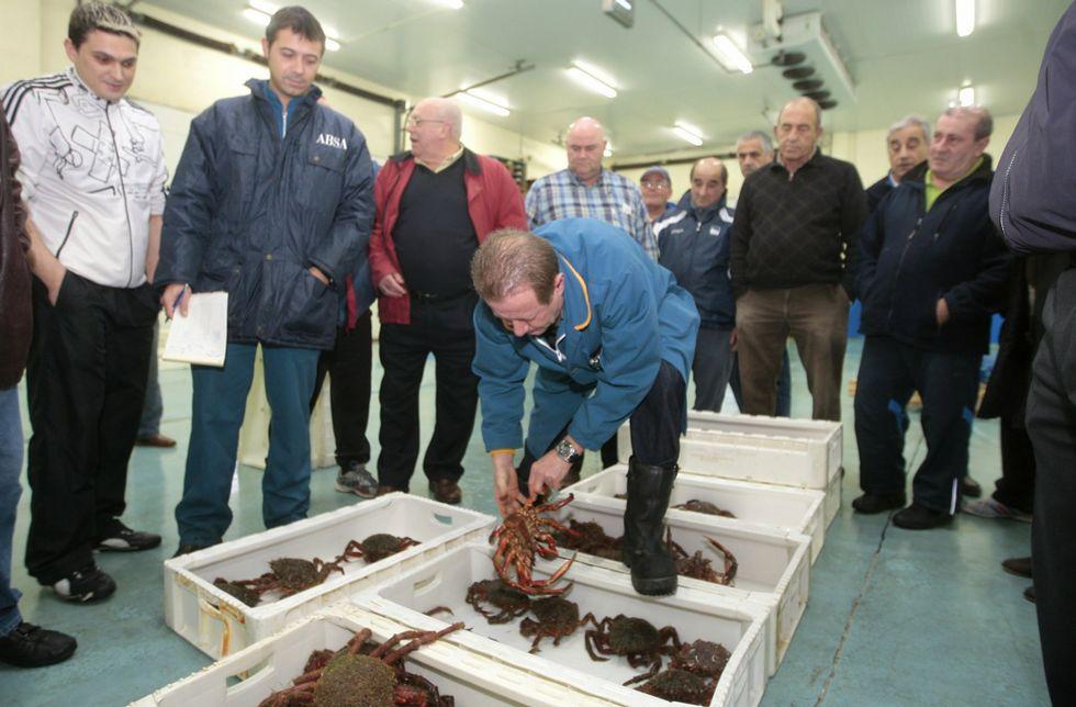 Lluvia y viento en toda Galicia.En lo que va de campaña, en la lonja de Burela se han subastado 14 toneladas de centolla fresca.