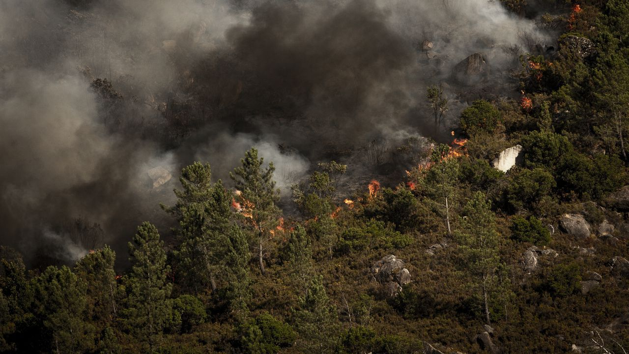 Helicóptero soltando paja en el Xurés, donde hubo los incendios forestales este pasado verano.Gabriel Alén, nuevo delegado territorial de la Xunta en Ourense