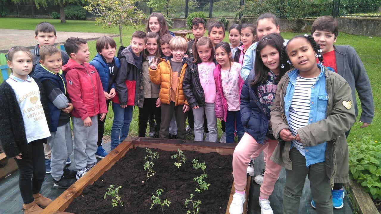Familias de A Coruña se concentrarán para demandar a la Xunta soluciones que garanticen la atención a la diversidad en los centros educativos.Uxía Blasi debe caminar 400 metros por una zona de monte y casi sin iluminación para coger el transporte escolar