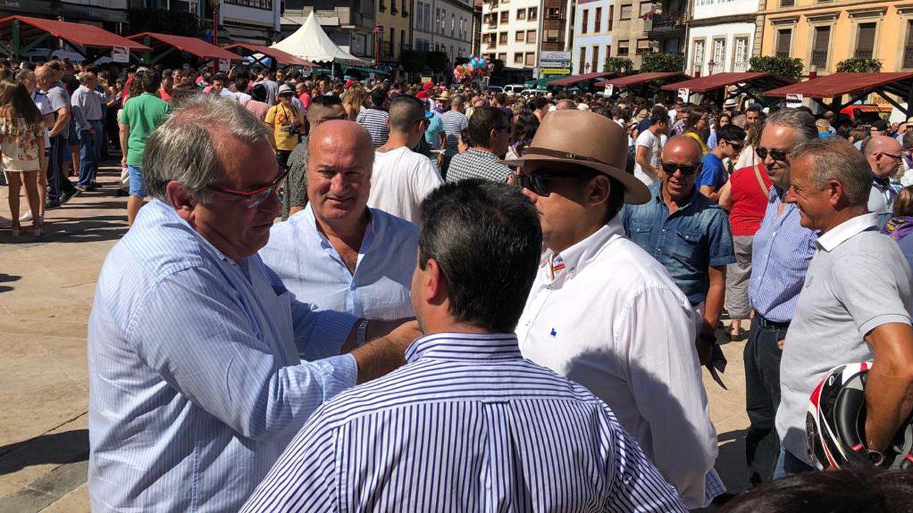Luis Venta (de frente) con un grupo de políticos del PP, entre los que se encuentra Ramón García Cañal y José Manuel Felgueres, en Villaviciosa