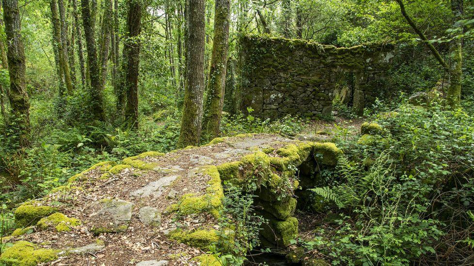 Restos del molino de Nemesio da Boca, junto a un viejo puente de piedra