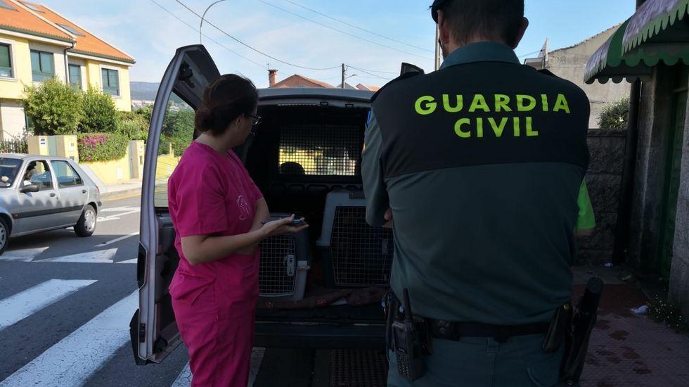 Un contenedor de basura a motor (averiado) en La Corredoria.Dinero