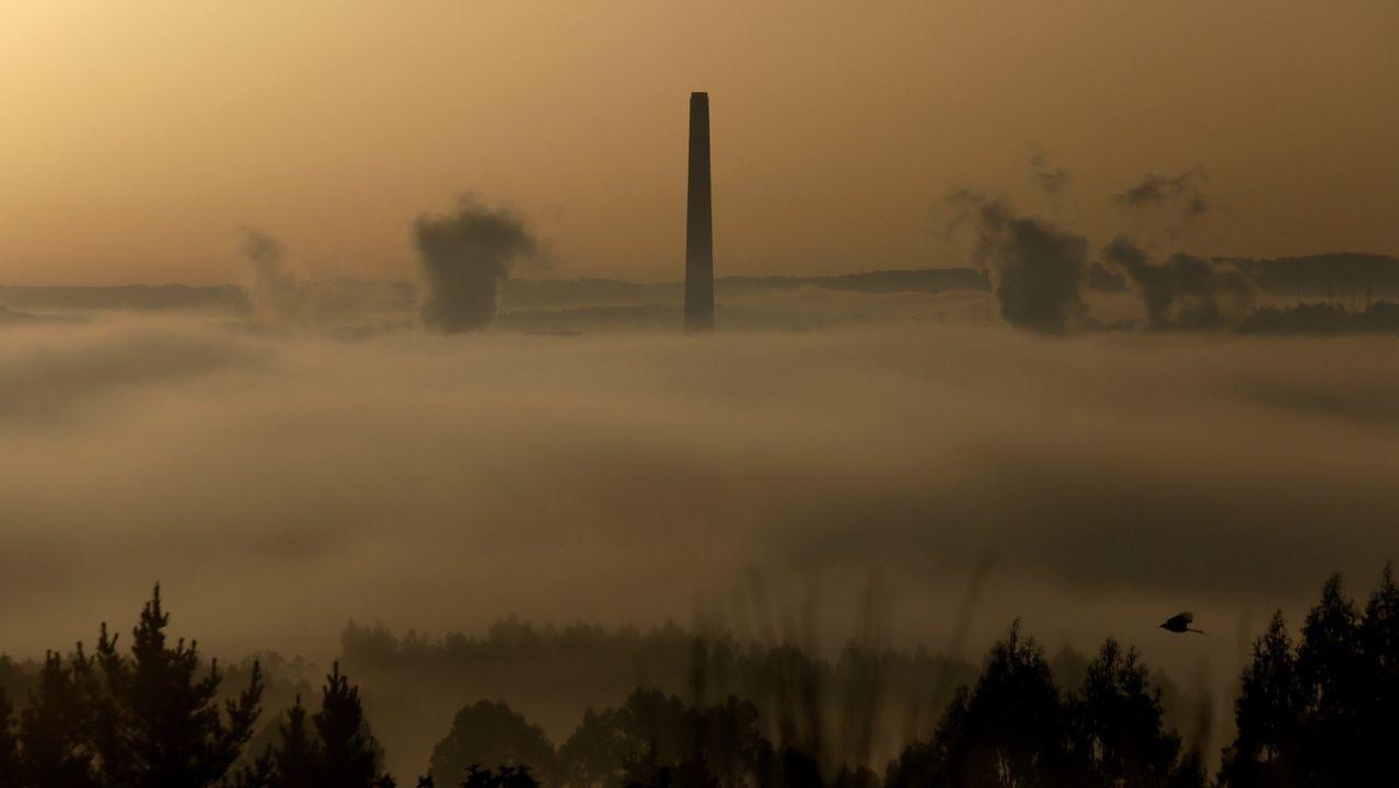 La caravana del carbón, paso a paso.Esta imagen de los cuatro grupos en funcionamiento hace meses que no se produce