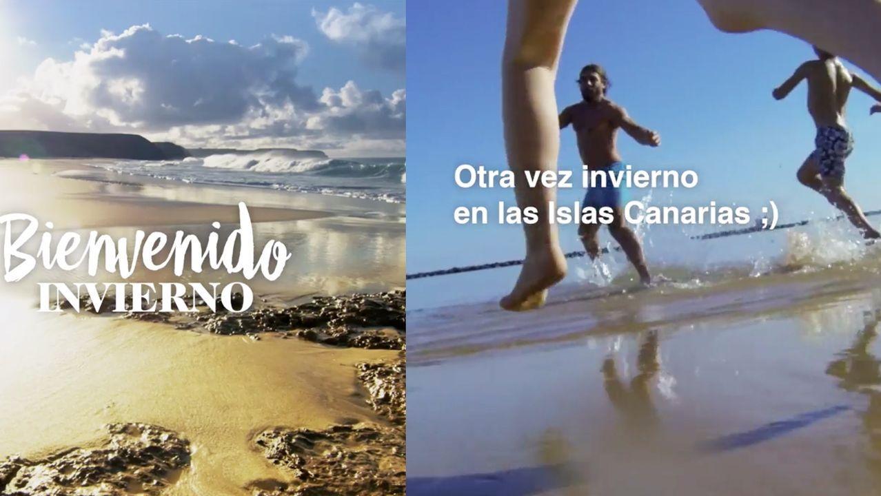 ¿Estuviste en el desfile de carnaval de Pontevedra? !Búscateen alguna de nuestras 211 fotografías!.El caracol bautizado en honor a Margarita Salas