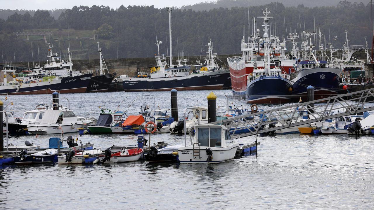 Europeche y Cepesca se oponen a crear áreas protegidas en un tercio de los mares de la UE porque reduciría las posibilidades de pesca de barcos como los más grandes de la imagen, atracados en Celeiro