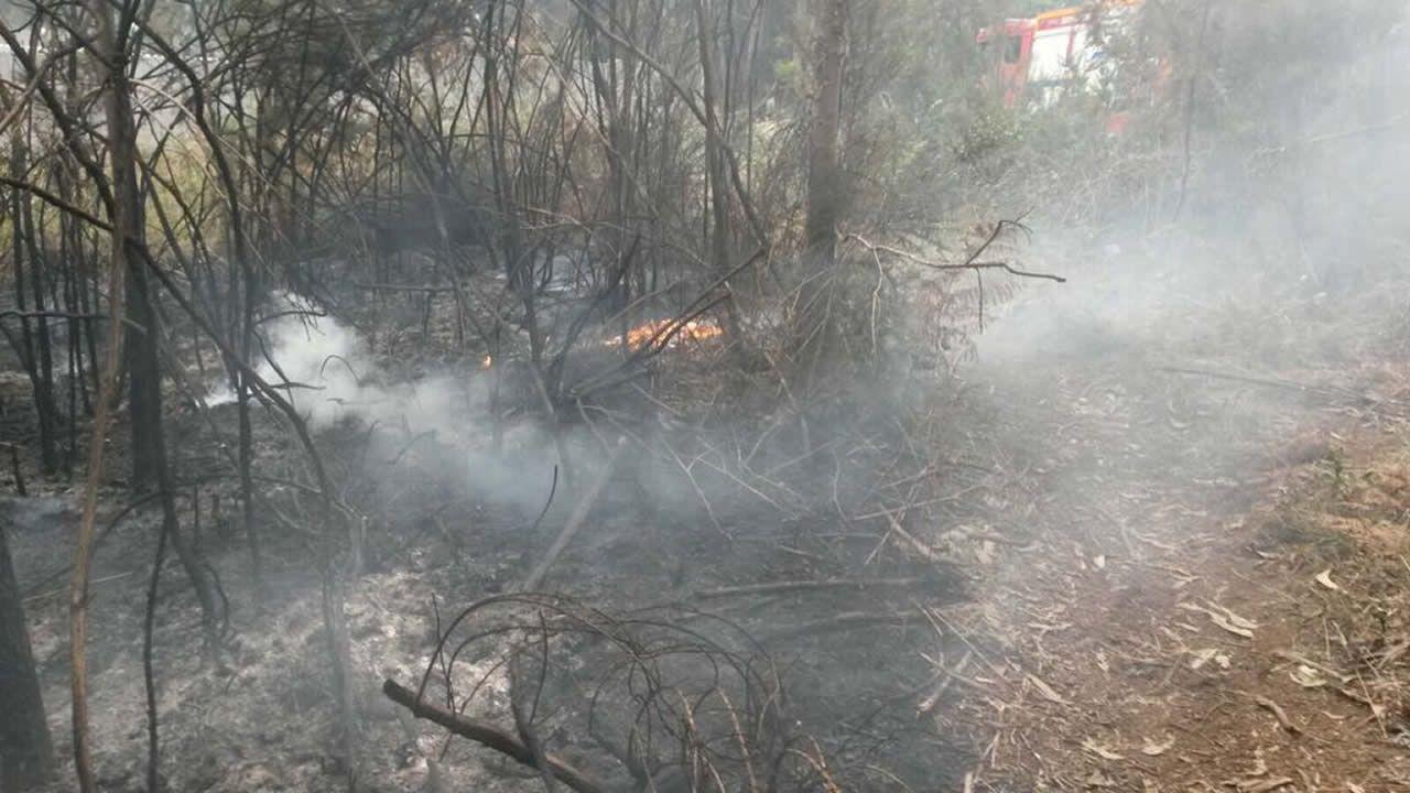 Incendio en Sada, en una zona limítrofe con Oleiros