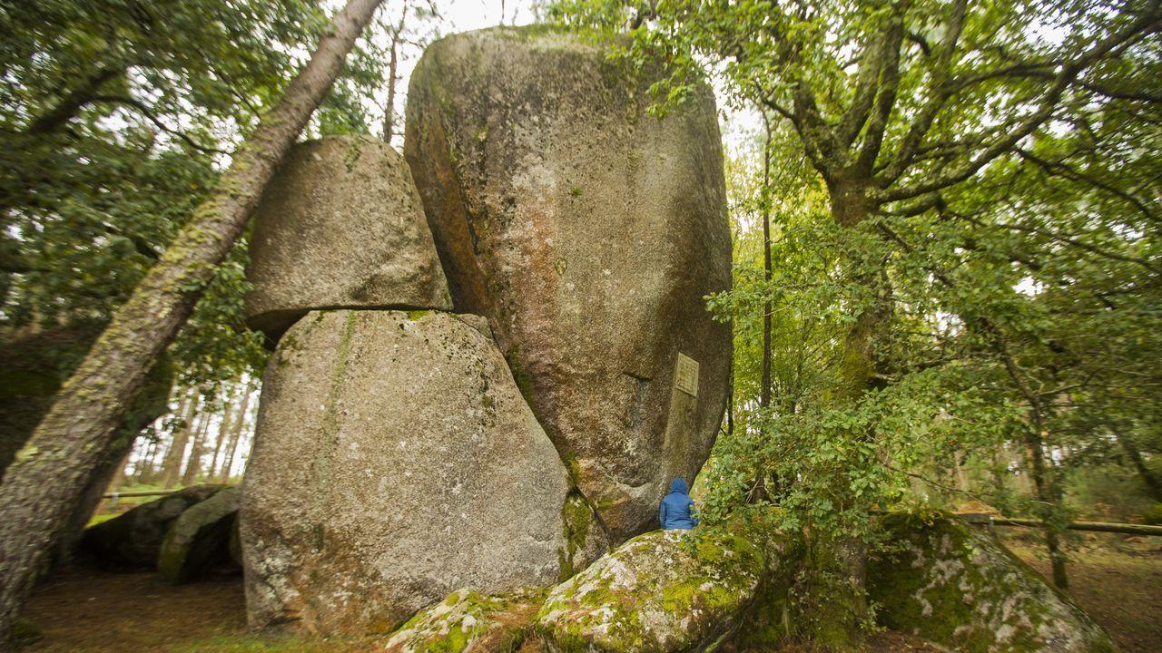 Recorrido visual por un laberinto de rocas, árboles y musgo.El museo geológico quirogués ya fue ampliado con una nueva construcción adosada al cuerpo central del edificio —a la derecha en la imagen— y ahora se trabaja en otra sección, a la izquierda