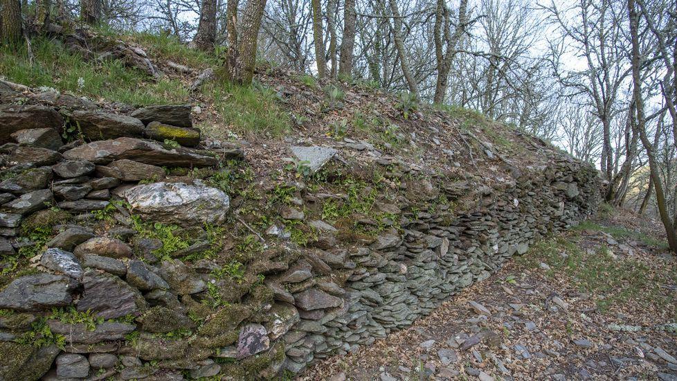 Restos de murallas en el castro de A Parte, situado en una loma