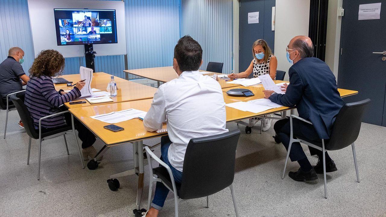 La reunión se mantuvo de forma telemática y en los próximos días se celebrarán más