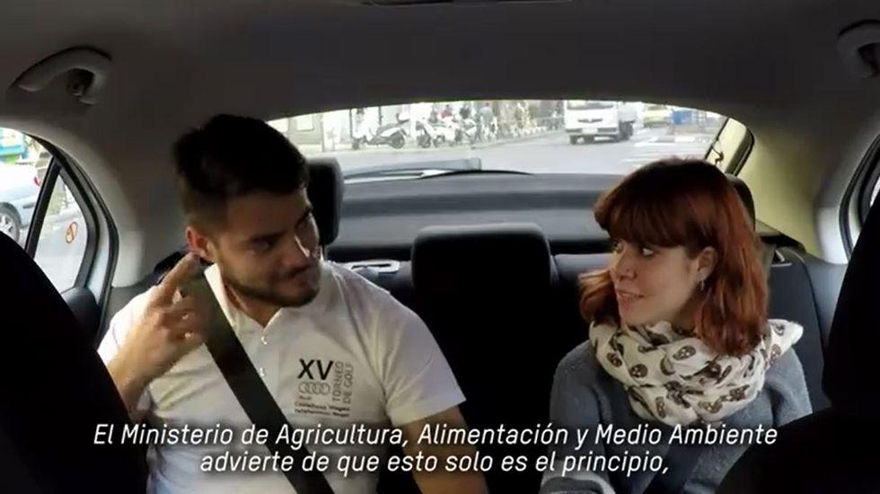 Los pasajeros de un taxi «se enteran» de que no podrán comerse las doce uvas en Nochevieja