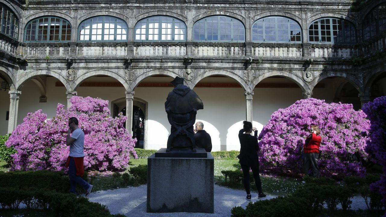 Azaleas en el jardín del claustro del pazo de Fonseca, en Santiago
