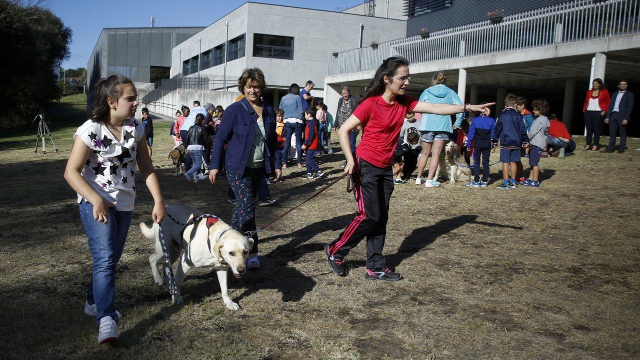 Presentación de Marshall, un perro de asistencia que fue entrenado para atender a Gisela, una alumna con discapacidad del CEIP Camiño Inglés de Sigüeiro