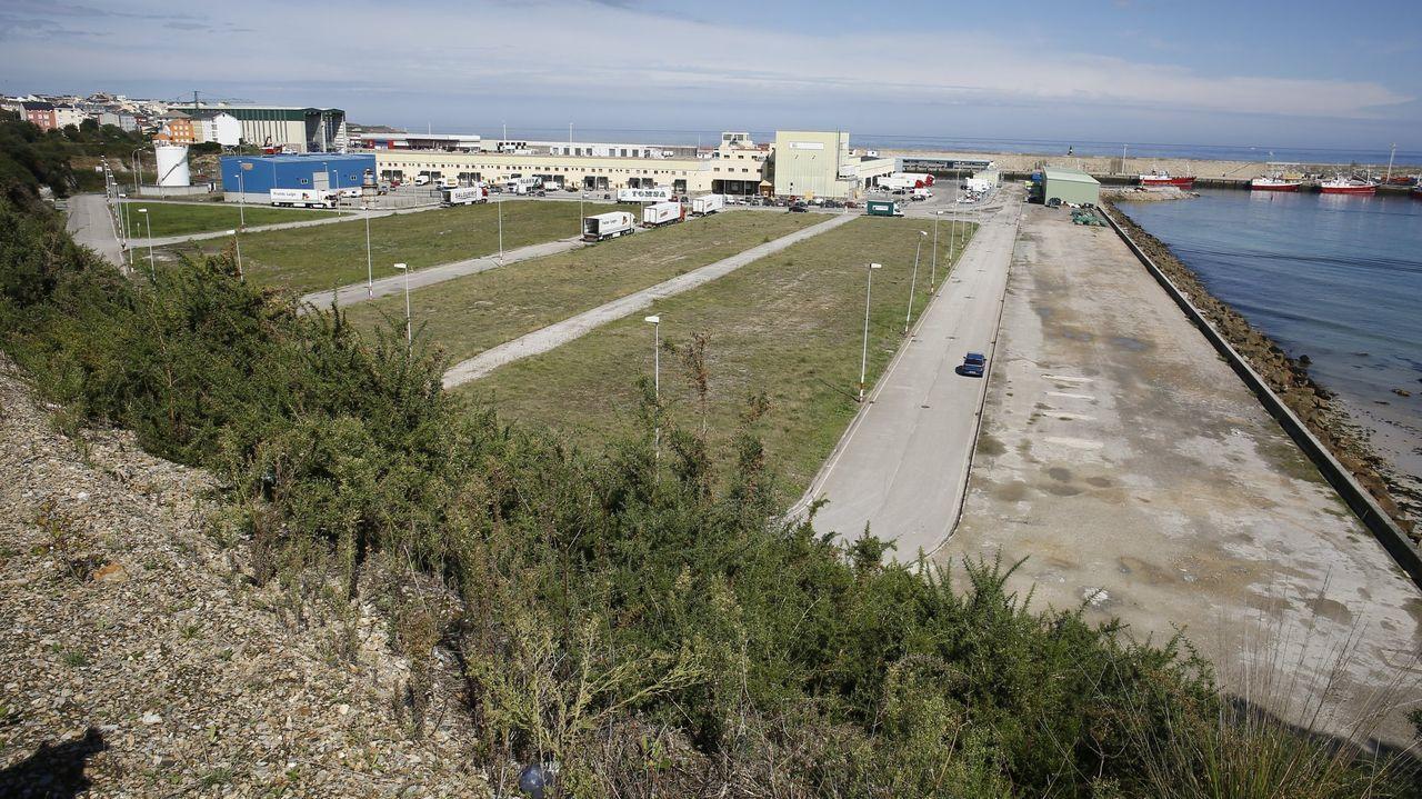 Según el Concello, la empresa noruega pretende ocupar unos 25.000 metros cuadrados en el puerto burelense