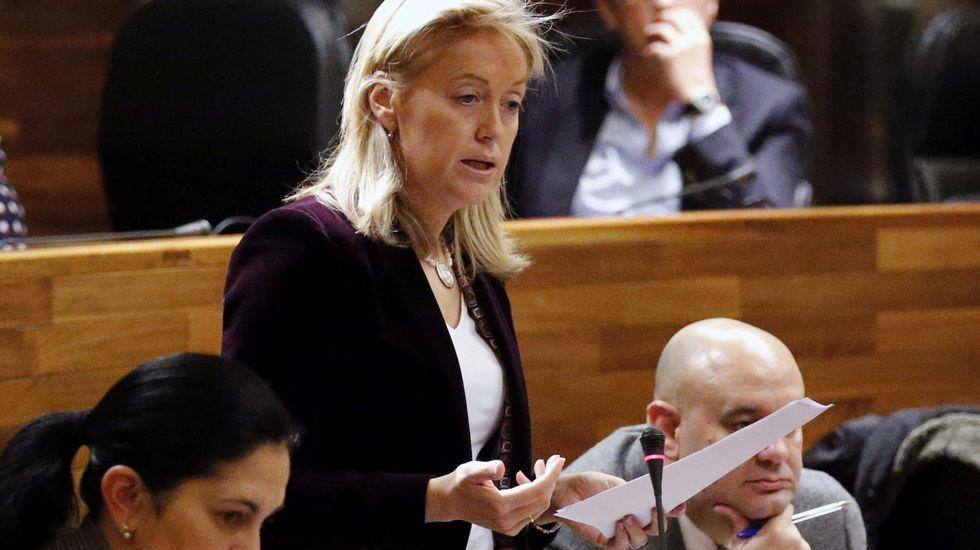 La portavoz de Foro Asturias, Cristina Coto, durante el pleno de hoy de la Junta General.
