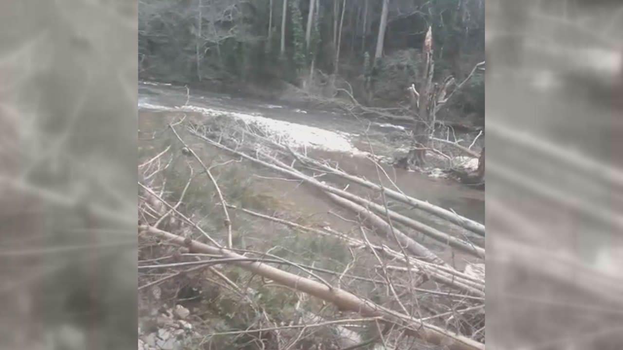 El lamentable estado del Río Eo en A Pontenova.El sector de la madera genera un importante volumen de trabajo en casi toda A Mariña