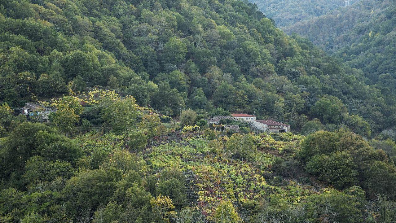 La ruta finaliza en la localidad de Rabacallos