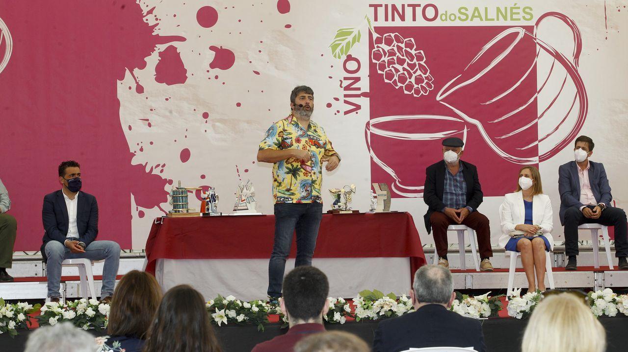 Festa do tinto do Salnés en Ribadumia