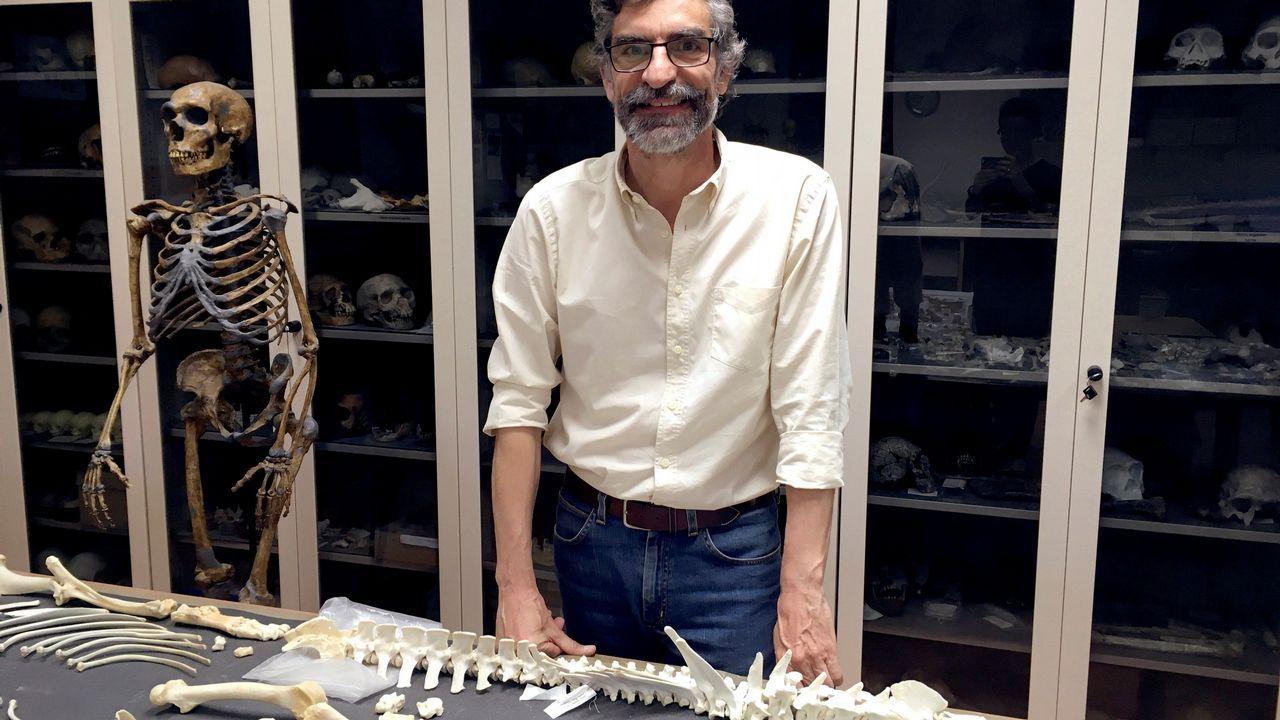 El paleontólogo Antonio Rosas