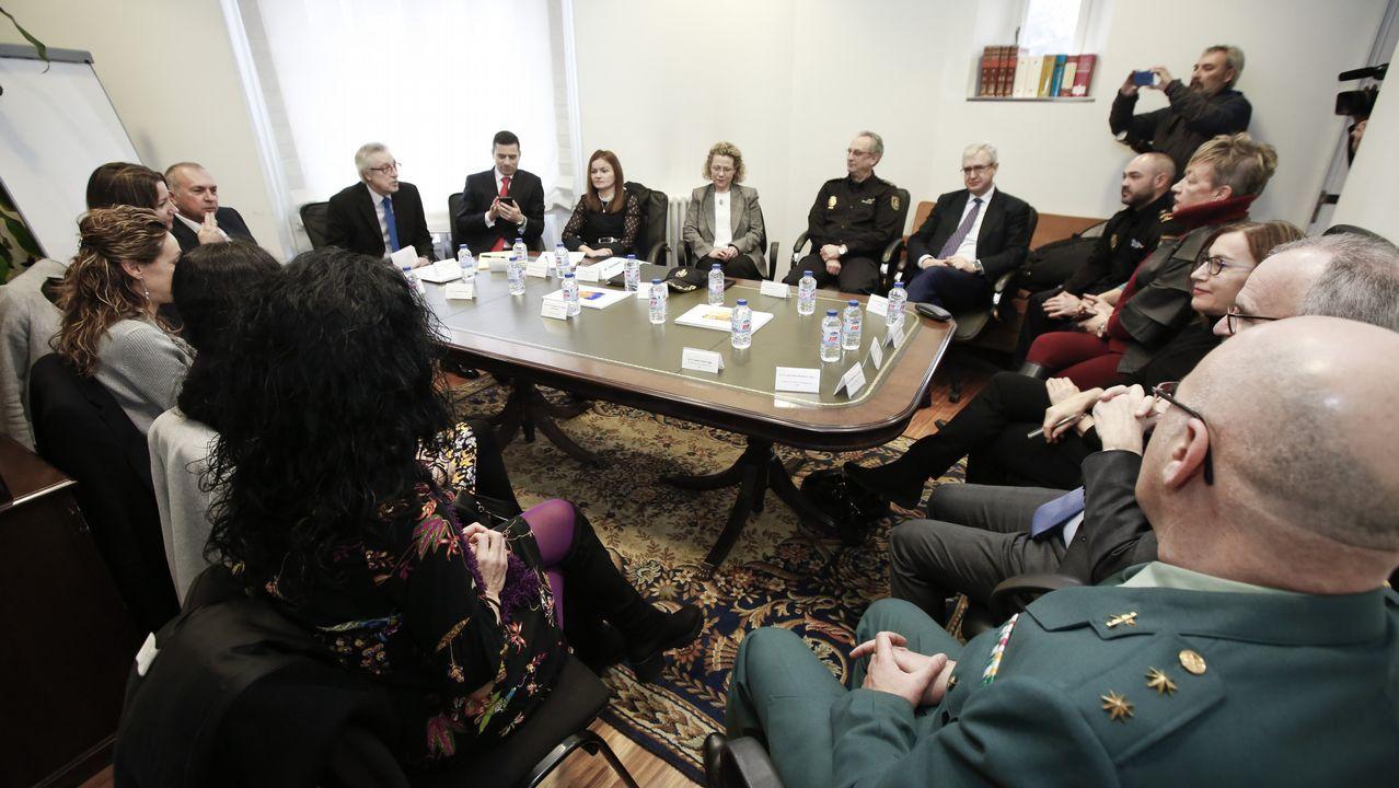 Cadenas participó este lunes en la constitución de la Comisión de Violencia de Género de Lugo