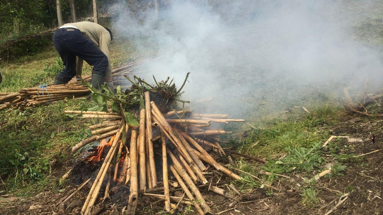 Así es la planta de biomasa Greenalia.Imagen de archivo de una quema controlada en un monte vecinal de Barbanza