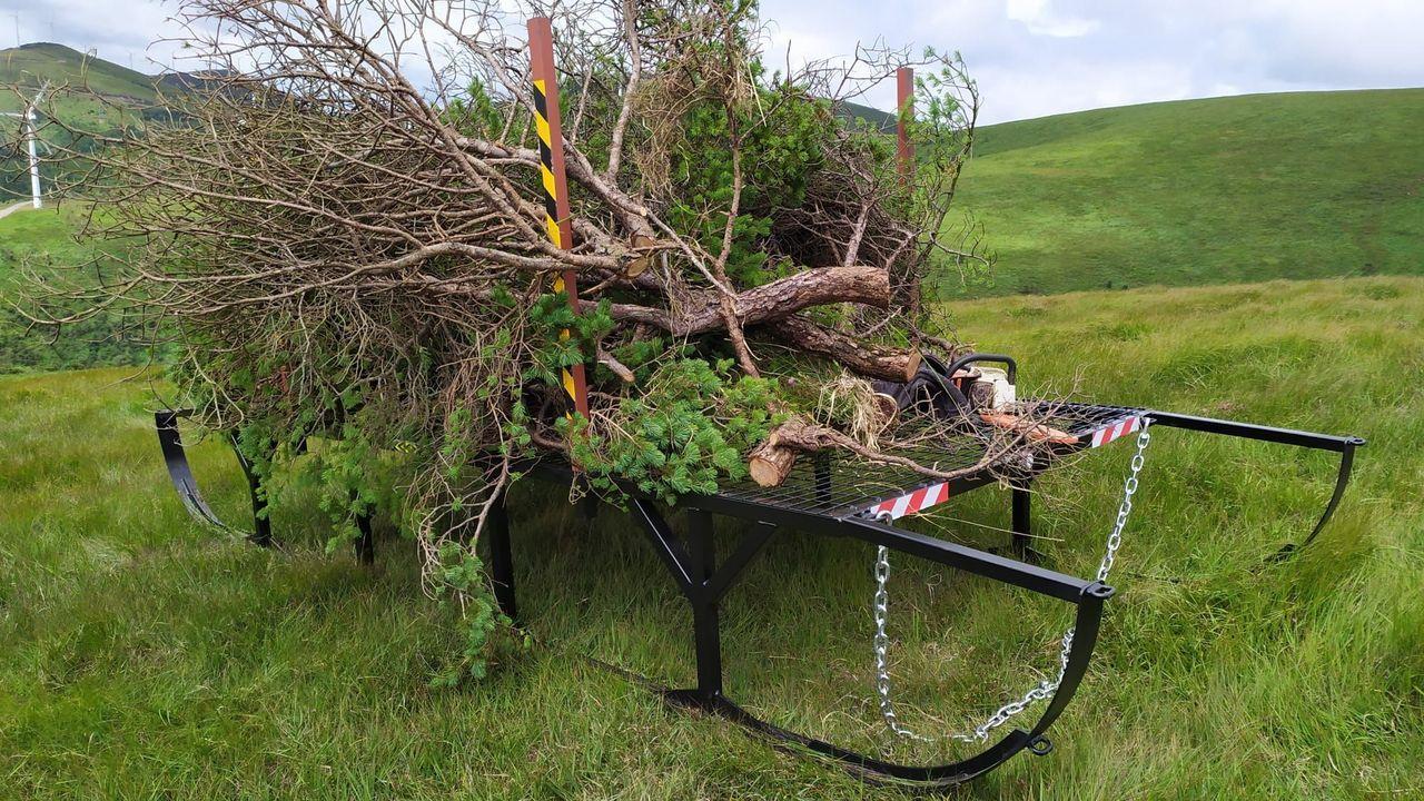 En la zona ya se hizo un ensayo con los trineos que se usarán para sacar la madera