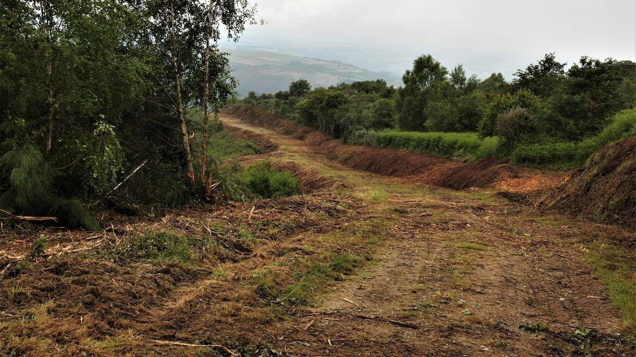 Los trabajos de desbroce se llevan a cabo en varias pistas y otros lugares donde se acumula maleza