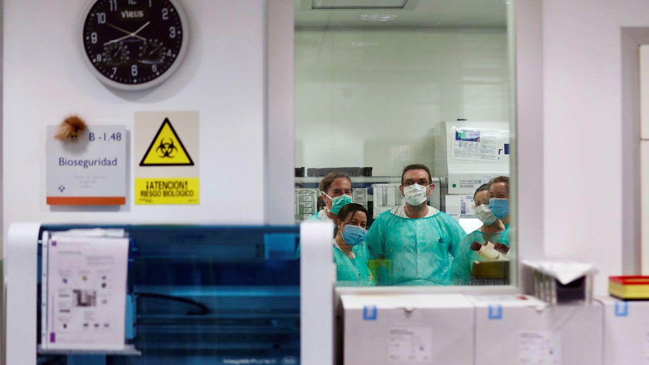 Técnicos sanitarios del Hospital Universitario Central de Asturias (HUCA), trabajan en el interior de la cabina de seguridad del laboratorio de virología de este centro de referencia del Principado