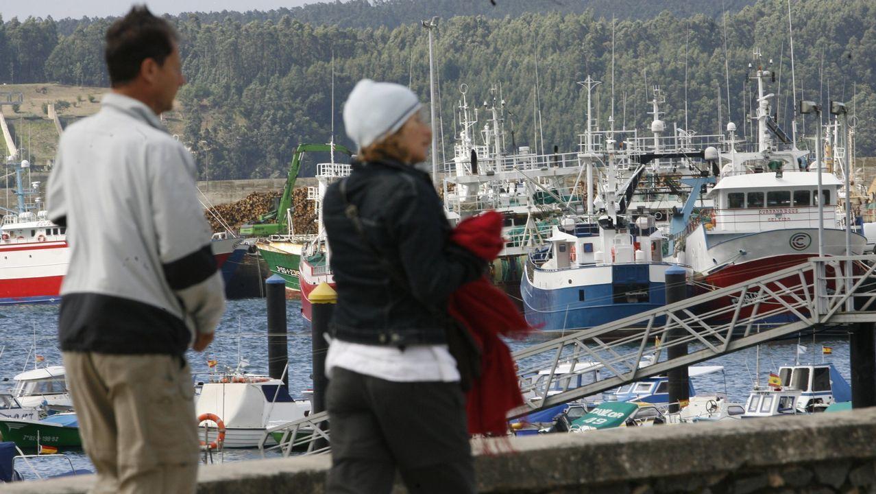 Puerto de Celeiro está recibiendo numerosas consultas sobre un programa pionero en toda España
