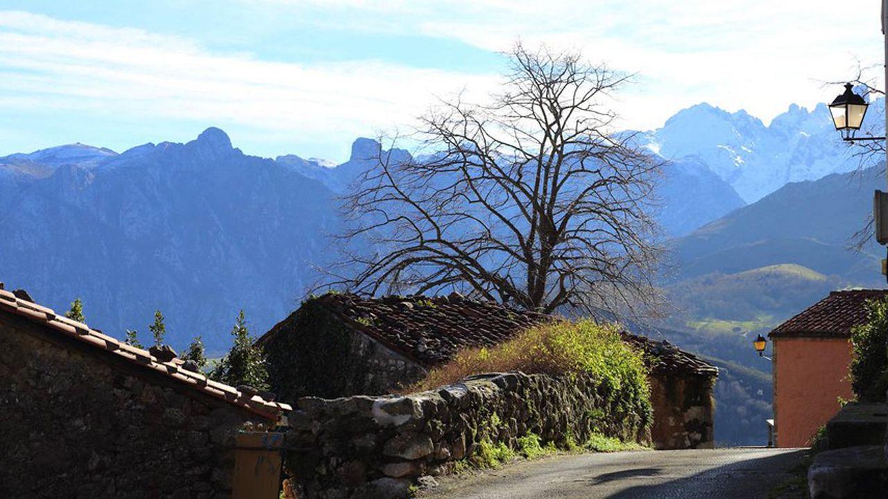 Las muñecas de la Princesa de Asturias.Asiego con los Picos de Europa de fondo
